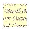 Formal Italic 3